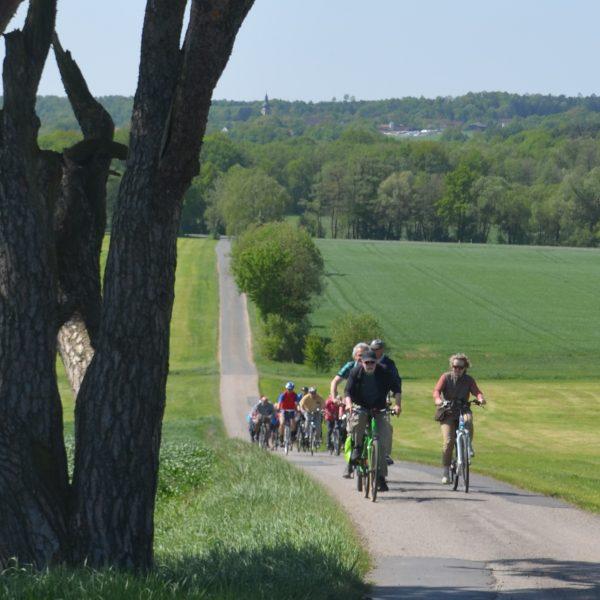 Radfahrer auf einer Tour bei Benk